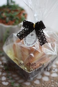 Langue_de_chatchocolat_blanc_PT2.jpg